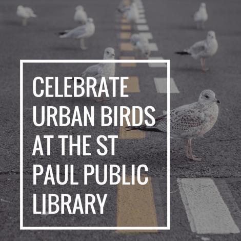 Celebrate Urban Birds